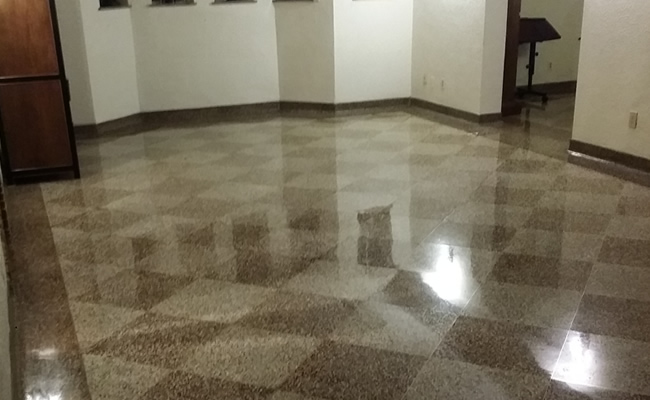 Terrazzo Repair And Polishing Pictures Gross Pointe Mi